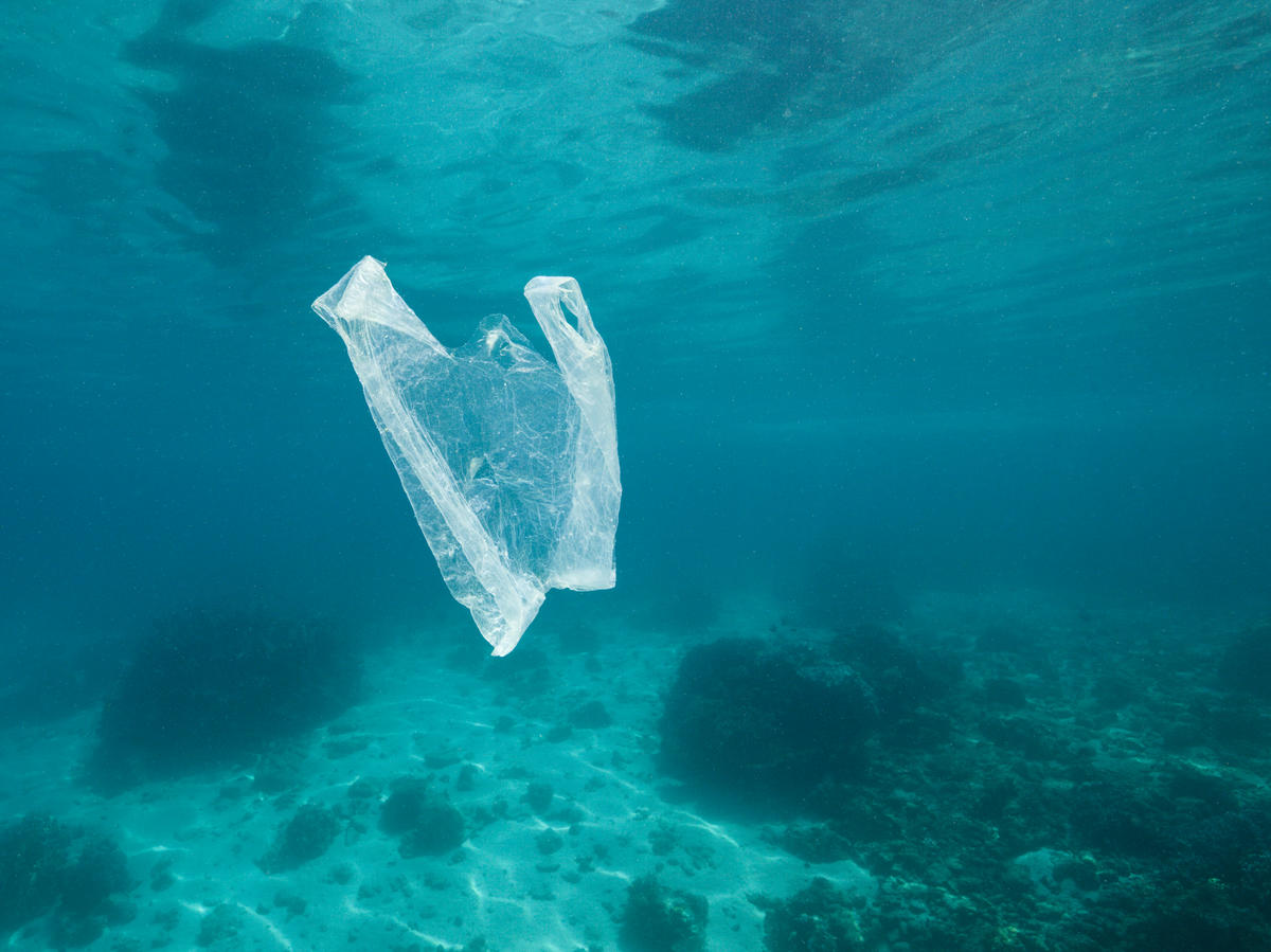 EU proposes new rules - say bye to single-use plastics
